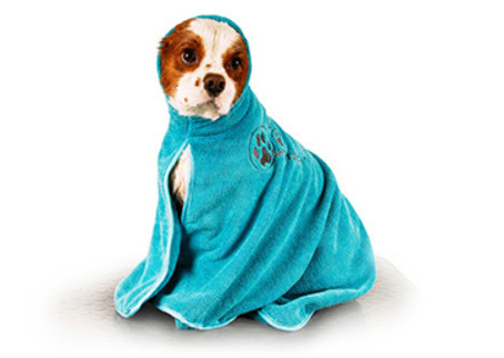 Microfibre Towel, turquoise - Dry Dude