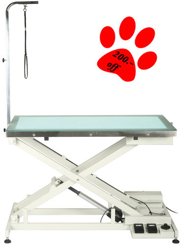 Dog grooming table with LED light