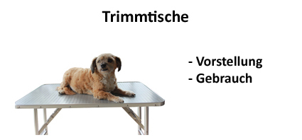 Video-Trimmtische